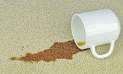 Profitable Carpet Cleaning Services in SW17